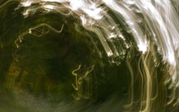 Oskarp abstraktion av den naturliga skogen Royaltyfri Bild