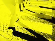 Oskarp stadszebramarkering royaltyfria foton