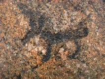 Oskarp textursten för bakgrund på kusten av Onega sjön, med petroglyphs på den Royaltyfri Fotografi