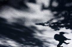 Oskarpa skuggor av mannen och naturen fotografering för bildbyråer