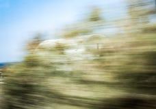 Oskarpa träd Arkivbilder
