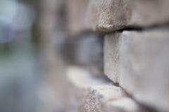 Oskarpt slut upp tegelstenväggen royaltyfri fotografi