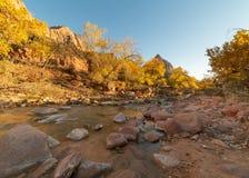 Oskuldfloden i den Zion nationalparken fodras med stenblock för röd sandsten som eroderas från bergen över royaltyfri foto