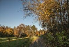 Oslo - ein Weg in einem Park Lizenzfreies Stockbild