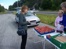 Oslo, Norvegia - 19 luglio 2007: La giovane donna compra le fragole nel mercato di strada fotografie stock libere da diritti