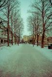 OSLO, NORVEGIA - 26 MARZO, 2018: Il punto di vista all'aperto della gente che cammina nelle vie all'allineamento dell'albero in V Immagini Stock Libere da Diritti