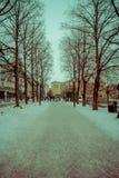 OSLO, NORVEGIA - 26 MARZO, 2018: Il punto di vista all'aperto della gente che cammina nelle vie all'allineamento dell'albero in V Fotografia Stock