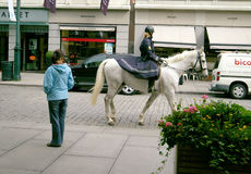 Oslo Norway. Mounted policewoman. stock photos