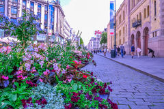 OSLO, NORWAY: Nice flowers decoration in Karl Johans Gate, the famous street of Oslo Royalty Free Stock Photography