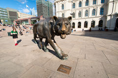 Oslo tiger horizontal Stock Photography