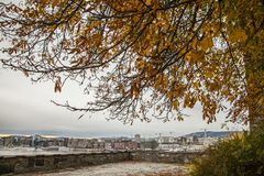 Oslo - a view of the Aker Brygge, autumnal tree. This image shows a view of Oslo - the Aker Brygge and some autumnal trees Stock Images