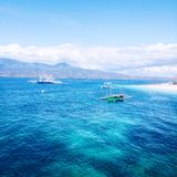 Oslob, Cebu. Philippines🏊🏻 Royalty Free Stock Images