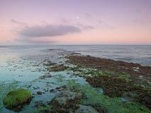 Osmington филирует заход солнца пляжа Стоковое Изображение RF