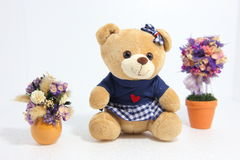 Oso con dos flores decorativas Imagen de archivo libre de regalías