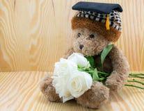 Oso de Brown con la flor de las rosas blancas del amor foto de archivo libre de regalías