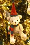 Oso de la Feliz Navidad Fotos de archivo libres de regalías