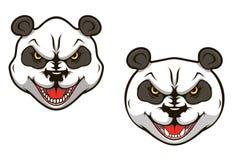 Oso de panda enojado Imágenes de archivo libres de regalías