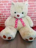 oso de peluche blanco para su tarjeta del día de San Valentín foto de archivo libre de regalías