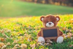 Oso de peluche con el tablero negro que se sienta en campo de hierba en el mar del otoño Fotografía de archivo
