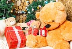 Oso de peluche debajo del árbol de navidad Foto de archivo libre de regalías