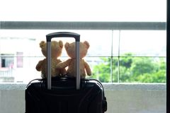 Oso de peluche dos que se sienta en un equipaje en alojamientos Turista a fotografía de archivo