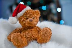 Oso de peluche en un sombrero de la Navidad Foto de archivo libre de regalías