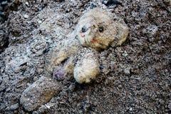 Oso de peluche lacerado y abandonado Fotografía de archivo libre de regalías