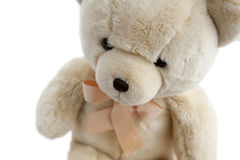 Oso de peluche lindo foto de archivo libre de regalías