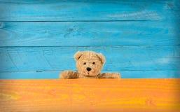 Oso de peluche lindo con colores de fondo completos  Fotografía de archivo libre de regalías