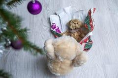 Oso de peluche lindo con su presente foto de archivo libre de regalías