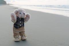 Oso de peluche que se coloca en la playa Imágenes de archivo libres de regalías