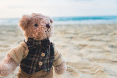 Oso de peluche que se coloca en la playa Foto de archivo libre de regalías