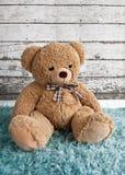 Oso de peluche que se sienta en una manta mullida Imagen de archivo libre de regalías
