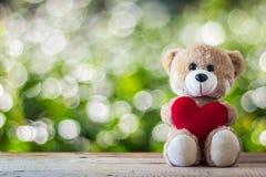 Oso de peluche que sostiene una almohada en forma de corazón Foto de archivo libre de regalías