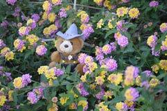 Oso de peluche rodeado por las flores del Lantana Fotos de archivo