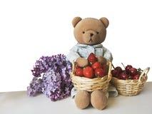 Oso de peluche simple con la lila, la fresa y el cherr Fotos de archivo