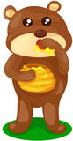 Oso del bebé con el crisol de miel Imagenes de archivo