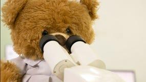 oso del juguete que mira el microscopio fotos de archivo libres de regalías