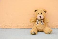 Oso del peluche Foto de archivo libre de regalías