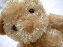 Oso del peluche Fotos de archivo libres de regalías