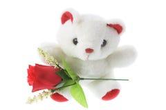Oso del peluche con las rosas rojas Foto de archivo libre de regalías