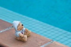 Oso del peluche por la piscina Fotos de archivo libres de regalías