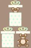 Oso en la actual caja Imagen de archivo libre de regalías