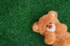 Oso lindo del peluche Imagen de archivo libre de regalías