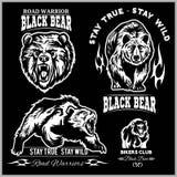 Oso negro para el logotipo, el emblema del equipo de deporte, los elementos del diseño y las etiquetas Foto de archivo