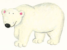 Oso polar blanco Foto de archivo