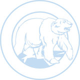 Oso polar blanco, enmarcado en un círculo Imagen de archivo libre de regalías