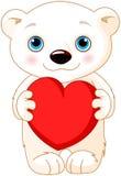 Oso polar del día de San Valentín Imagen de archivo
