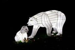 Oso polar del terciopelo Foto de archivo libre de regalías