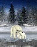 Oso polar y cachorro Fotos de archivo